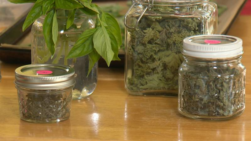 How to take fresh herbs from your garden and make them last through the winter.