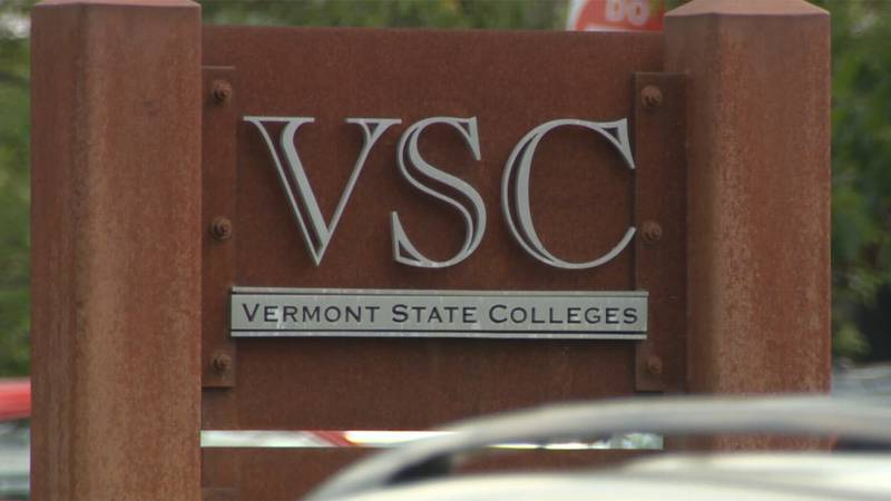 Students and alumni weigh in on the proposed new name for the consolidated entity of the...