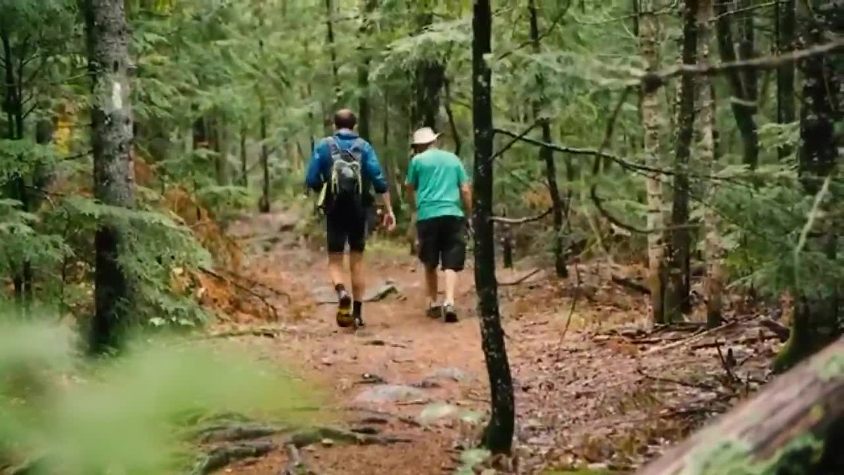 A land conservation group says 629 acres of forest land along the Appalachian Trail through the...