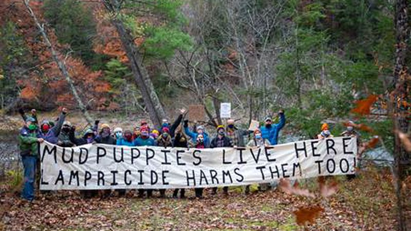Protesters in Milton last month calling attention to lampricide treatments in Lamoille River.