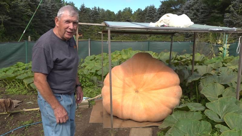 Richard Squires is an award-winning giant pumpkin grower.