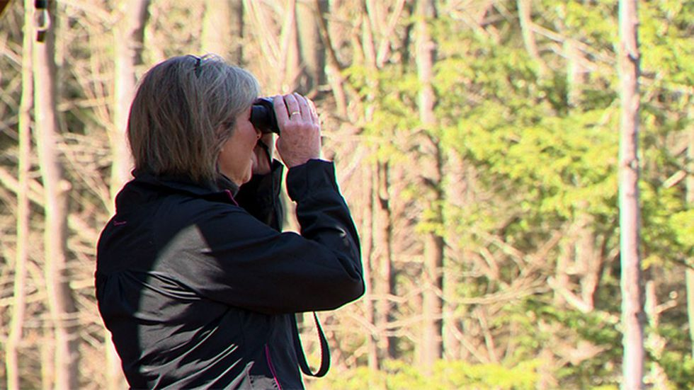 Michelle Osgood scanning for Osprey in April.