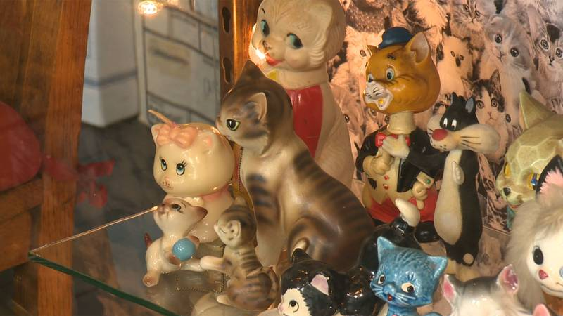 A new cat-themed vintage store opens Friday in Winooski.