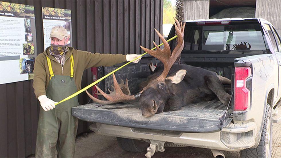 Management of Vermont's declining elk population