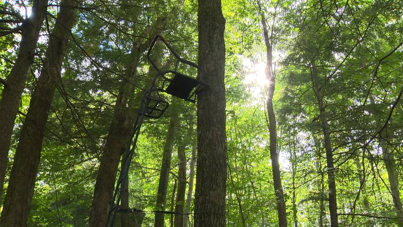The Vermont Department of Fish and Wildlife offers expert advice on tree stand safety for...