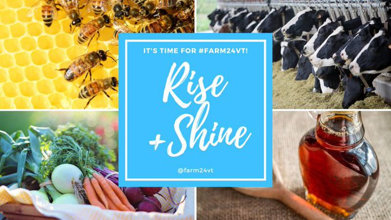 #Farm24VT is a 24-hour celebration of agriculture, food, and dairy that began at 5 a.m....