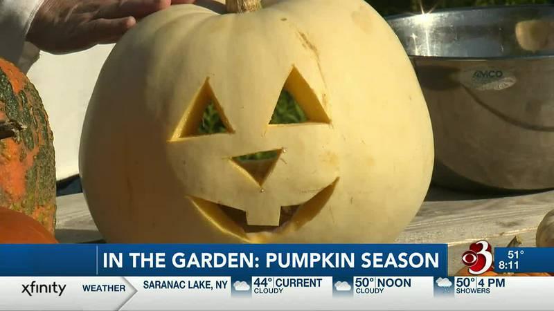 Sharon Meyer & Charlie Nardozzi give tips on preserving your pumpkins for Halloween.