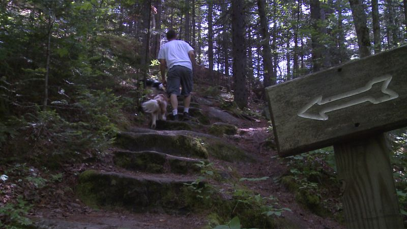 Retiring Vermont State Parks Director Craig Whipple says the state's parks became even more...