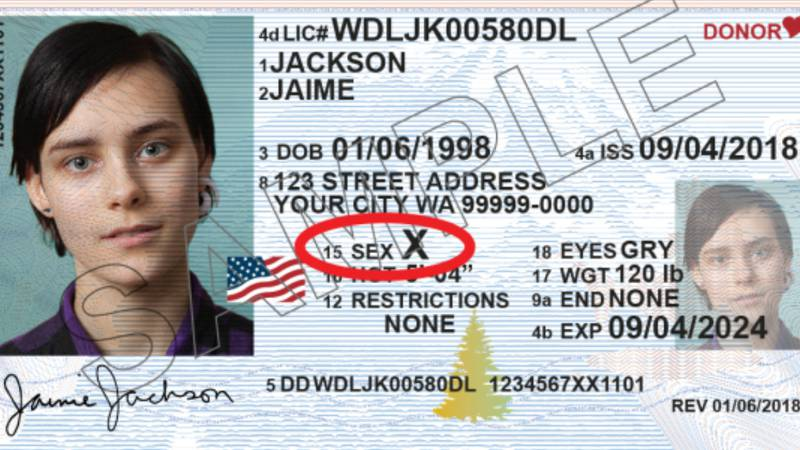 An example of what a nonbinary ID card looks like in Washington. (Source: Washington State...
