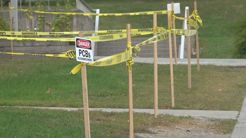 Harmful PCBs found in Burlington High School