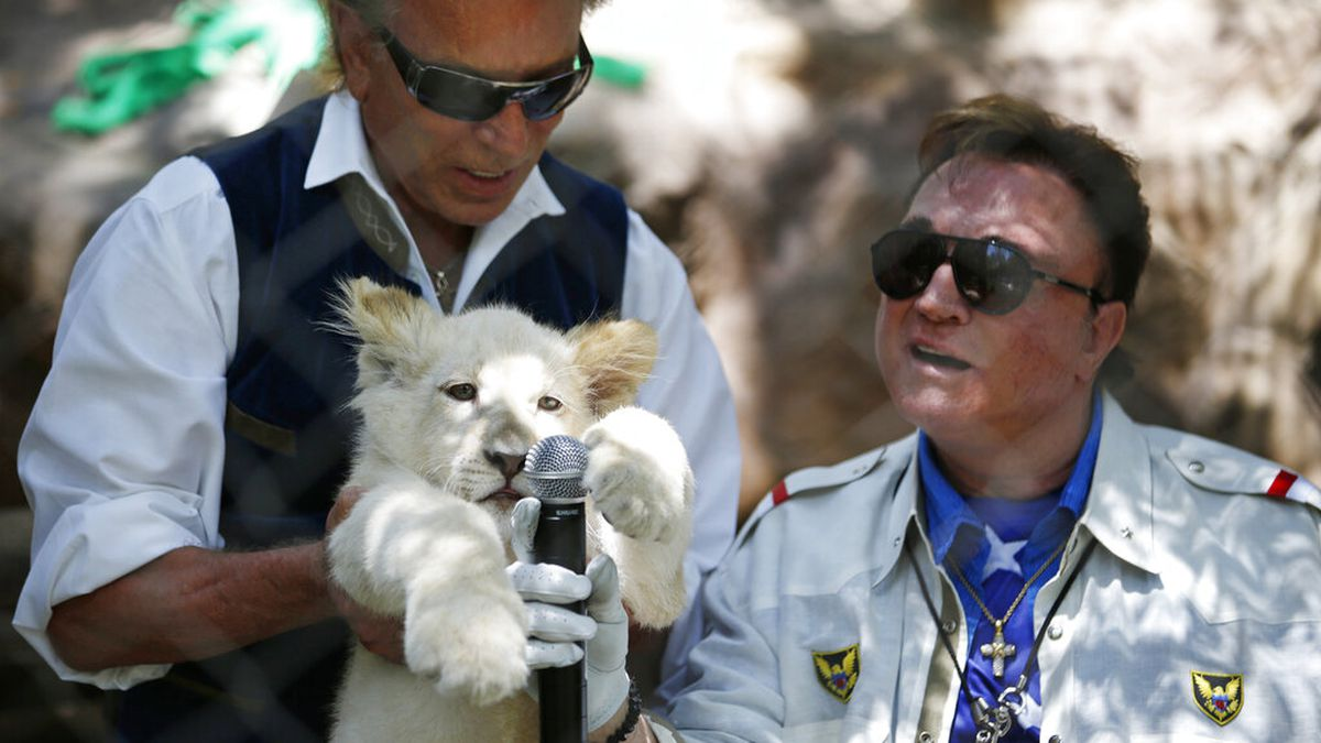In this Thursday, July 17, 2014, file photo, Siegfried Fischbacher, left, holds up a white lion...