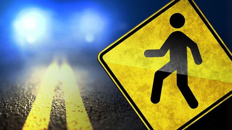 Rutland man struck by Michigan driver
